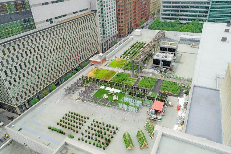 Laboratoire d'agriculture urbaine du Palais des congrès